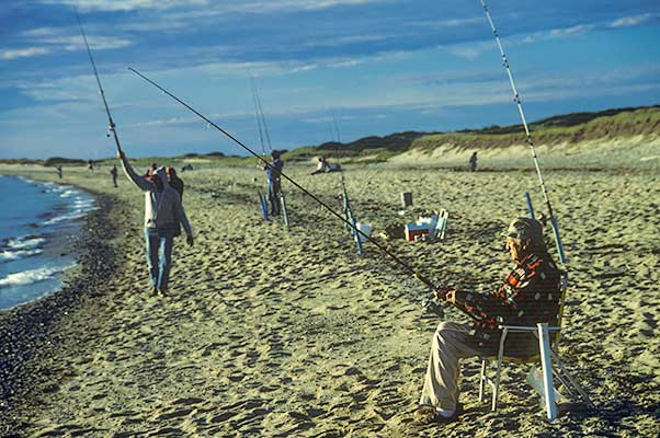 fishermen, provincetown, cape cod, fishing, herring cove, sunset