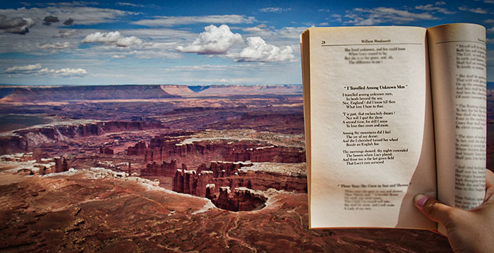 Canyonlands, National Park, Utah, Grand View Point Overlook