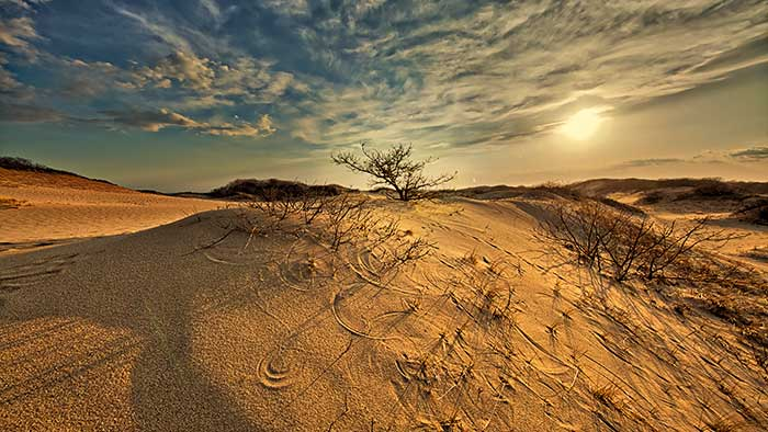 Race Point, Sunset, Dunes, Sand Dunes, Provincetown, Cape Cod