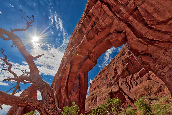 Pine Tree Arch, Canyonlands National Park, Moab, Utah