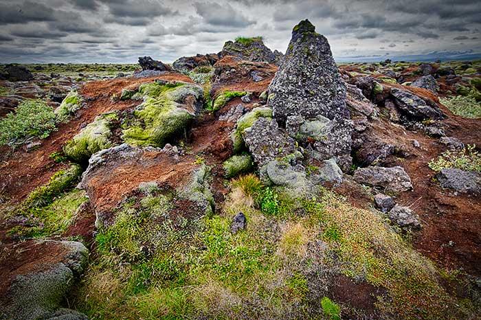 Lava Field, Iceland