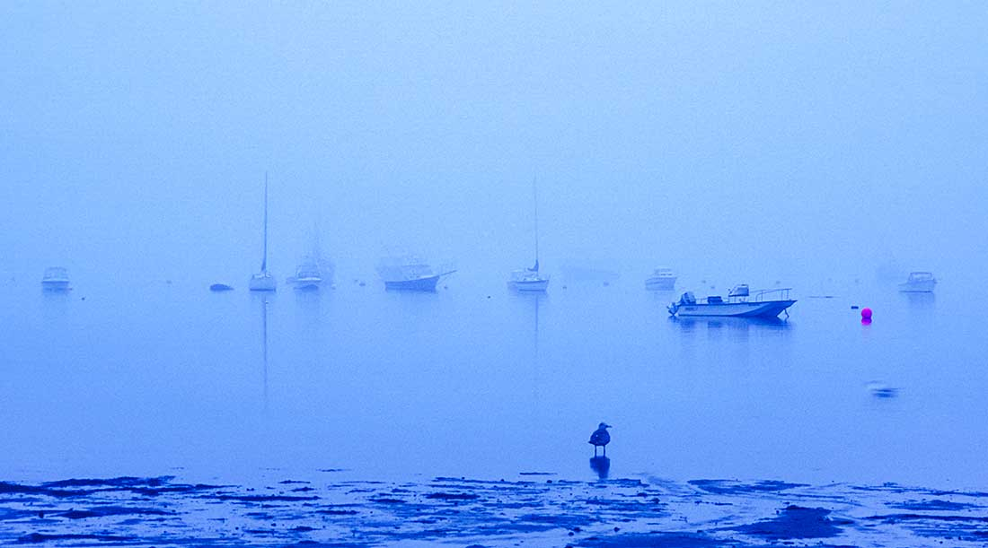 Heavy fog in the Cape Cod Bay.