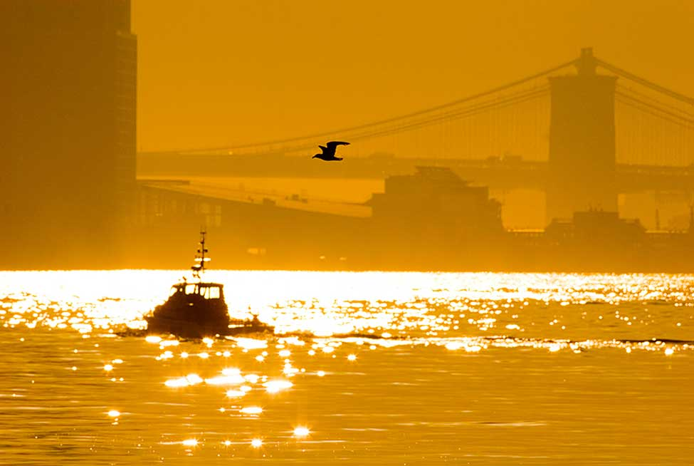 A Boat In The New York Bay