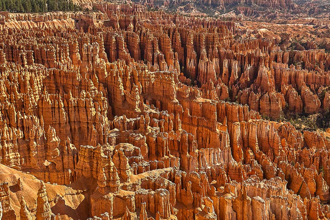 Bryce Amphitheater in Bryce Canyon, Utah.