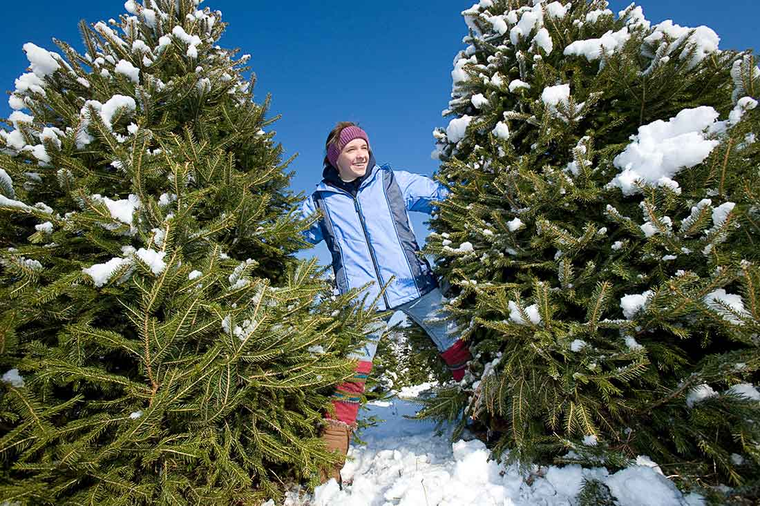 Young woman poses by a Christmas Tree.