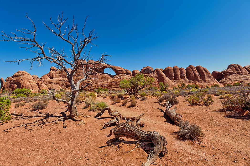 Skyline Arch in Arches National Park, Utah.
